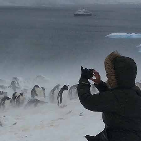 Photography with penguins.